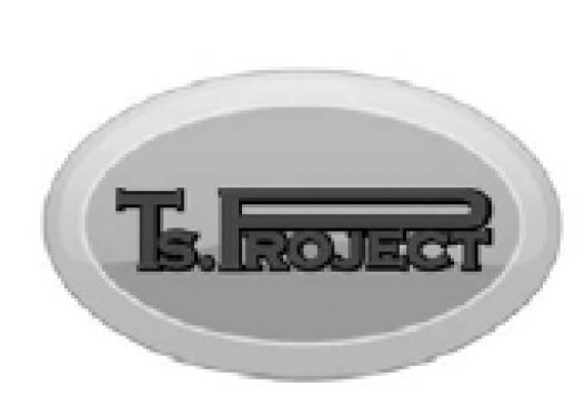 ts-project